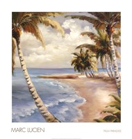 "Palm Paradise by Marc Lucien - 24"" x 25"""