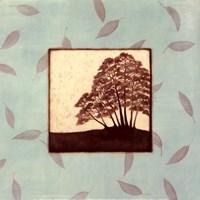 Birch Fine Art Print