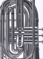 Symphonium Framed Print