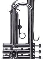 Trumpet Fine Art Print
