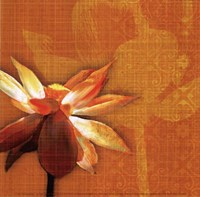 Efflorescence I Fine Art Print