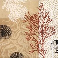 "Coral Impressions II by Tandi Venter - 5"" x 5"""