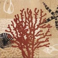 Coral Impressions III Fine Art Print
