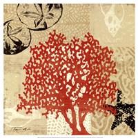 "Coral Impressions IV by Tandi Venter - 16"" x 16"""