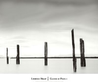 Cluster of Posts I Fine Art Print