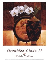 Orqudea Linda II Framed Print
