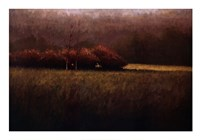 "Young Maples by Simon Winegar - 39"" x 28"""