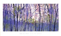 Into  The Woods Fine Art Print