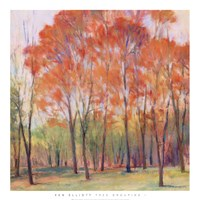 "Tree Grouping I by James Elliot - 28"" x 28"" - $21.49"