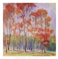 "Tree Grouping II by James Elliot - 28"" x 28"" - $20.99"