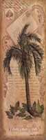 """Palm Fronds II by Anita Phillips - 12"""" x 36"""""""