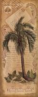 Palm Fornds II Fine Art Print