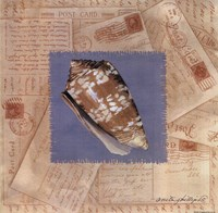 """Marbled Cone Post Card by Anita Phillips - 12"""" x 12"""", FulcrumGallery.com brand"""