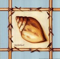 Bamboo Seashell I Fine Art Print