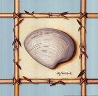 Bamboo Seashell II Framed Print