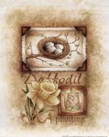 Spring Daffodil Fine Art Print