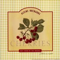 """Cherries by Stephanie Marrott - 8"""" x 8"""""""