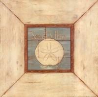 """Sand Dollars On Blue by Stephanie Marrott - 12"""" x 12"""""""