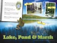 "Lake, Pond & Marsh by Angela Ferrante - 24"" x 18"""