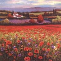 "Poppy Pastures I by T.C. Chiu - 12"" x 12"", FulcrumGallery.com brand"