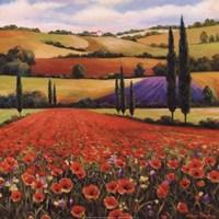 Fields of Poppies II Framed Print