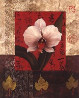 White Chinese Orchid Fine Art Print