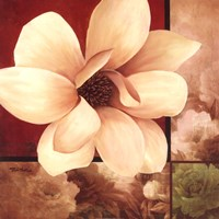 Magnolia Collage Fine Art Print