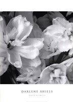 """Delphiniums II by Darlene Shiels - 20"""" x 28"""""""