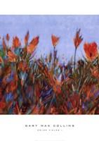 Color Fields I Fine Art Print