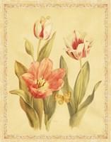 "Tulips and Butterflies II by Danhui Nai - 22"" x 28"""