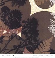 Botanica 4 Framed Print