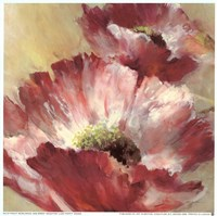 Lush Poppy Fine Art Print