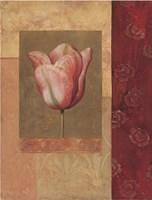 Tulipe Rosee Fine Art Print
