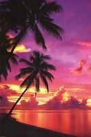 "Tahitian Sunset by Angela Ferrante - 24"" x 36"""