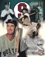 Ted Williams - Legends Of The Game Composite Fine Art Print