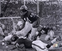 Gale Sayers Fine Art Print