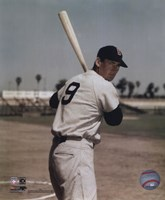 Ted Williams - Bat on shoulder Fine Art Print