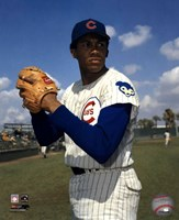 Ferguson Jenkins - Ball in glove, posed Fine Art Print