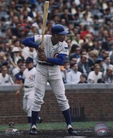 Ernie Banks - Batting Stance Fine Art Print