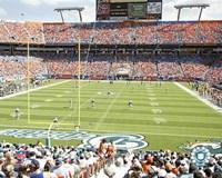 """Pro Player Stadium  - N.F.L. (Dolphins) by Angela Ferrante - 10"""" x 8"""""""