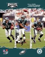 "8"" x 10"" Philadelphia Eagles"