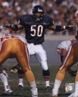 Mike Singletary - 1992 Action Fine Art Print