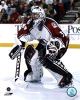 Patrick Roy - 1998 Action Fine Art Print
