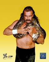 "Jake ""The Snake"" Roberts - #352 Fine Art Print"