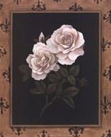 Rose Fleur De Lis Fine Art Print