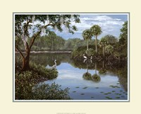 Three Cranes Swamp Framed Print
