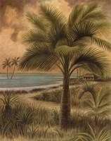 Island Palm II Framed Print