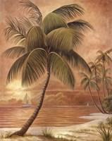 Island Palm III Framed Print
