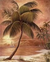Island Palm III Fine Art Print
