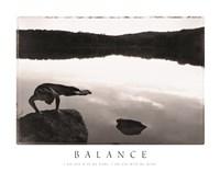 Balance - Yoga Fine Art Print